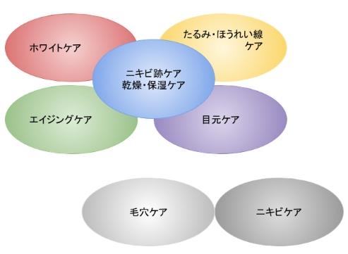 トライアルセットのアイテムごとに分類した画像